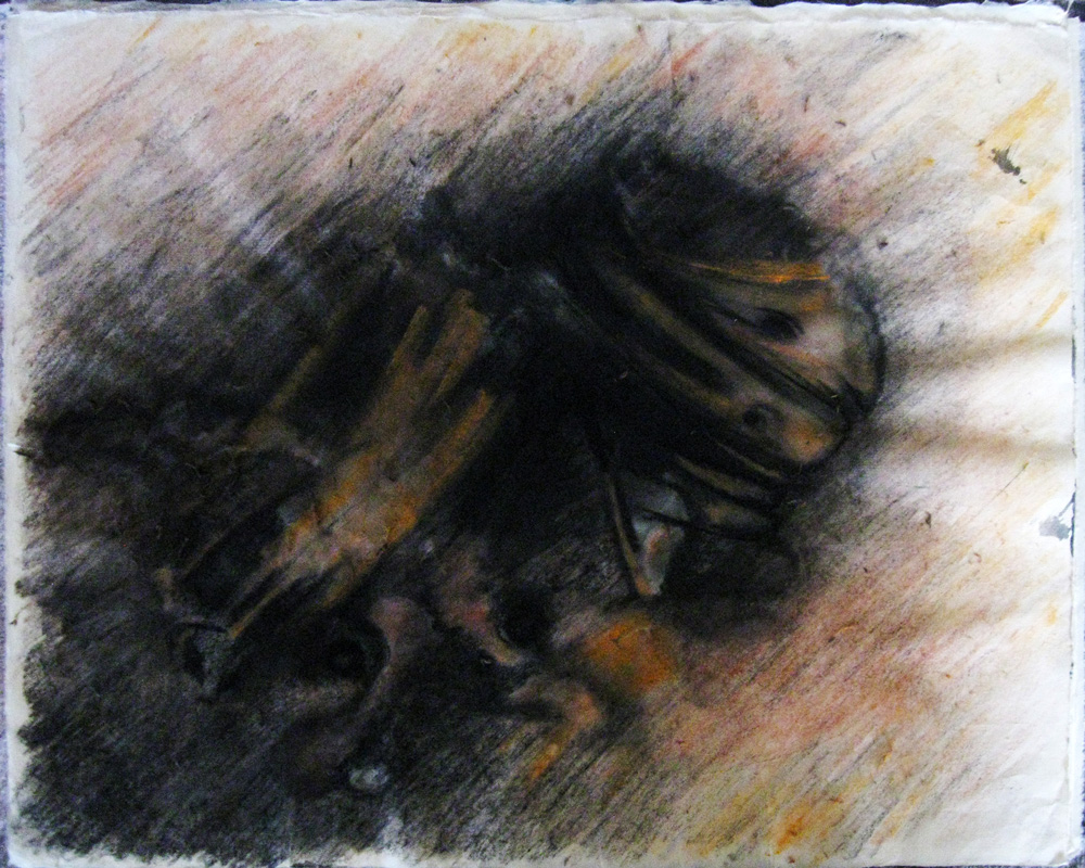 Untitled. 2011. Ink, pencil, charcoal, pastel on rice paper, 16¾ x 20¾